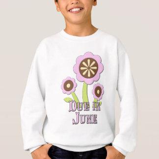 Due in June Expectant Mother Sweatshirt