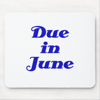 Due in June Mouse Pad