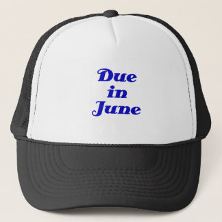 Due in June Trucker Hat