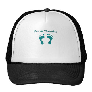 DUE IN NOVEMBER BLUE BABY FEET.png Trucker Hat