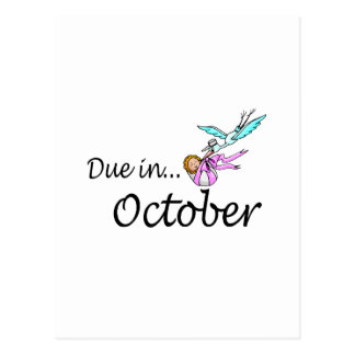 Due In October (Baby/Stork) Post Card