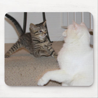 Dueling Kitties Mouse Pads