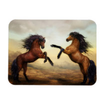 Dueling Stallions Painting Magnet
