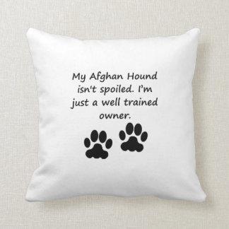 Dueño bien entrenado del afgano cojin