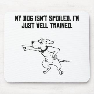 Dueño bien entrenado del perro tapetes de raton