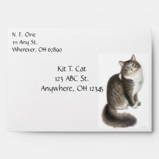 Duffy el sobre del gato de Coon de Maine