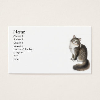 Duffy la tarjeta de visita del gato de Coon de