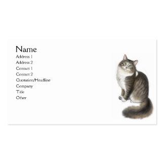 Duffy la tarjeta de visita del gato de Coon de Mai