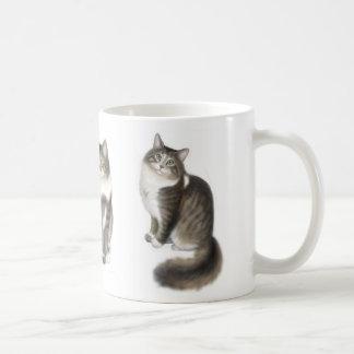 Duffy la taza del gato de Coon de Maine