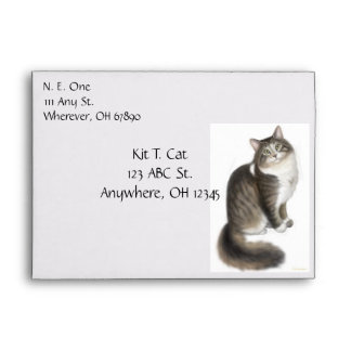 Duffy the Maine Coon Cat Envelope