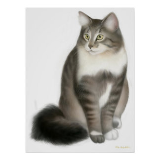 Duffy the Maine Coon Cat Print