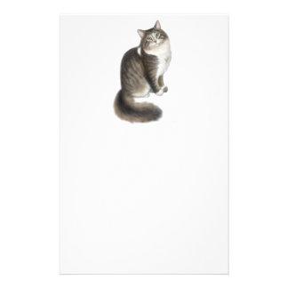 Duffy the Maine Coon Cat Stationery