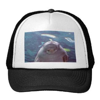 Dugong Gorros