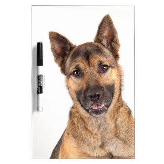 Duke Dry Erase Whiteboards