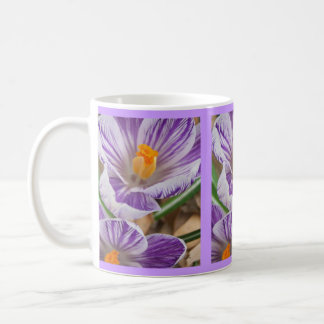 Dulce de Purpled Taza Clásica
