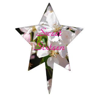 Dulce dieciséis de las flores de cerezo figura de tarta