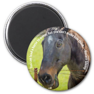 Dumb Horse Magnet