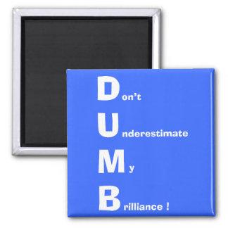 DUMB (white) Magnets
