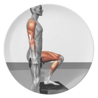 Dumbbell Step Up Dinner Plate