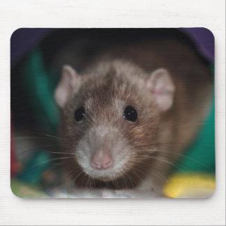Dumbo Fancy Rat Mousepad