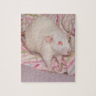 dumbo rat puzzle with tin