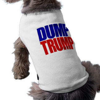 """DUMP TRUMP"" TEE"