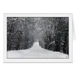 Dumprun Snowstorm Greeting Card