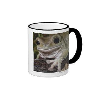 Dumpy Tree Frog. Smiling Frog. Litoria caerulea. Ringer Mug