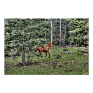 Dun Ranch Horse Cantering in Forest Equine Photo Poster