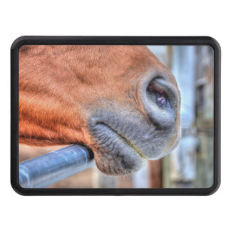 Dun Ranch Horse Muzzle Equine Photo Tow Hitch Cover