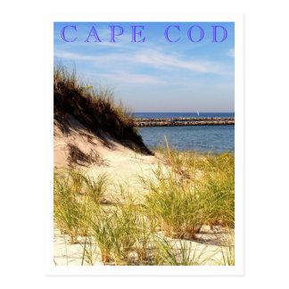Duna de Cape Cod Tarjeta Postal