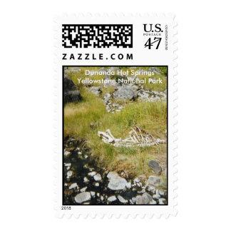 Dunanda Hot Springs Yellowstone National Park Postage