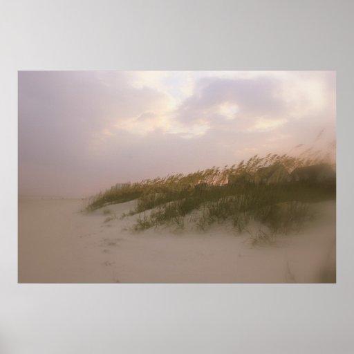 Dunas de arena costeras de Carolina Póster