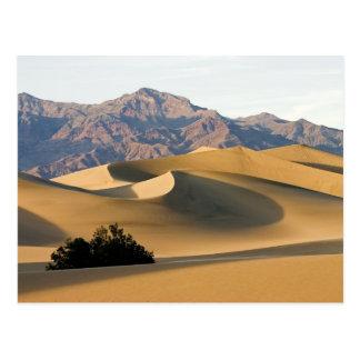 Dunas de arena de Death Valley… Postal