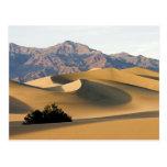 Dunas de arena de Death Valley… Tarjetas Postales