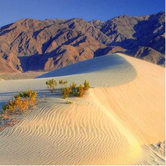 Dunas de arena de HDR Death Valley Fotoescultura Vertical