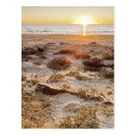 Dunas de arena de la playa de Malaquite Tarjetas Postales