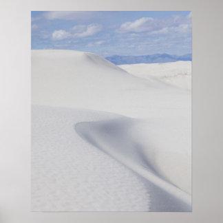 Dunas de arena del desierto poster