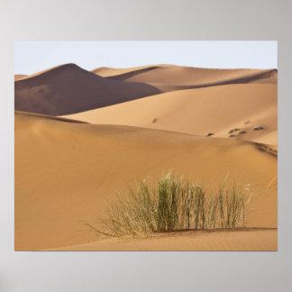 Dunas de arena, desierto del Sáhara, Marruecos Impresiones