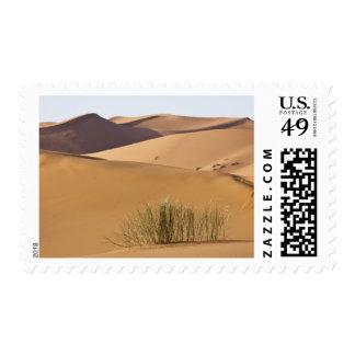 Dunas de arena, desierto del Sáhara, Marruecos Sellos