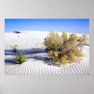 Dunas de arena en el desierto de Mojave, Californi Poster