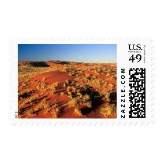 Dunas de arena en el desierto, reserva de sello