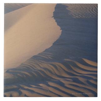 Dunas de arena en los planos del Mesquite Azulejo Cuadrado Grande