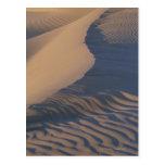Dunas de arena en los planos del Mesquite Tarjeta Postal