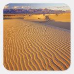 Dunas de arena planas del Mesquite en Death Valley Etiqueta