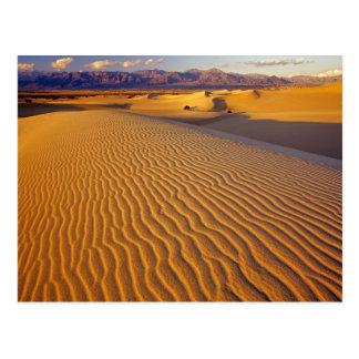 Dunas de arena planas del Mesquite en Death Valley Tarjetas Postales