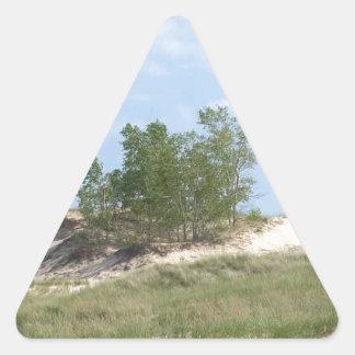 Dunas de arena selváticas pegatina triangular