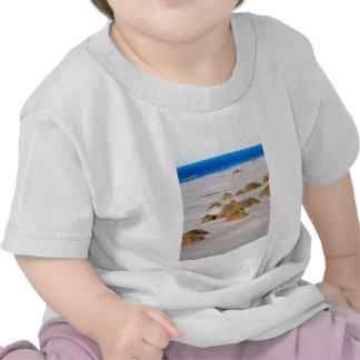 Dunas de arena y escupitajo de despedida de la hie camisetas