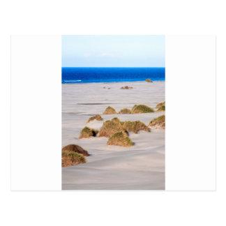Dunas de arena y escupitajo de despedida de la postal