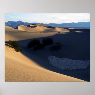 Dunas de Death Valley por la mañana Póster
